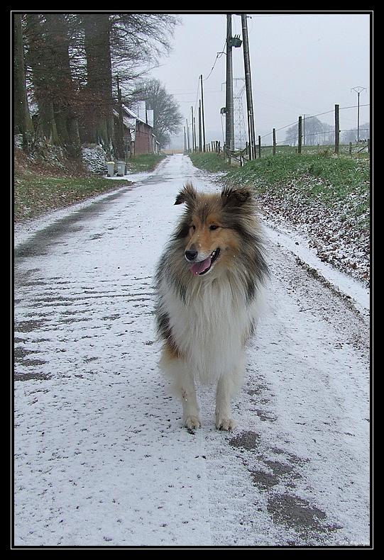 la première neige de Chyara LapremiereneigedeChyara3.2.2009.10.47.11