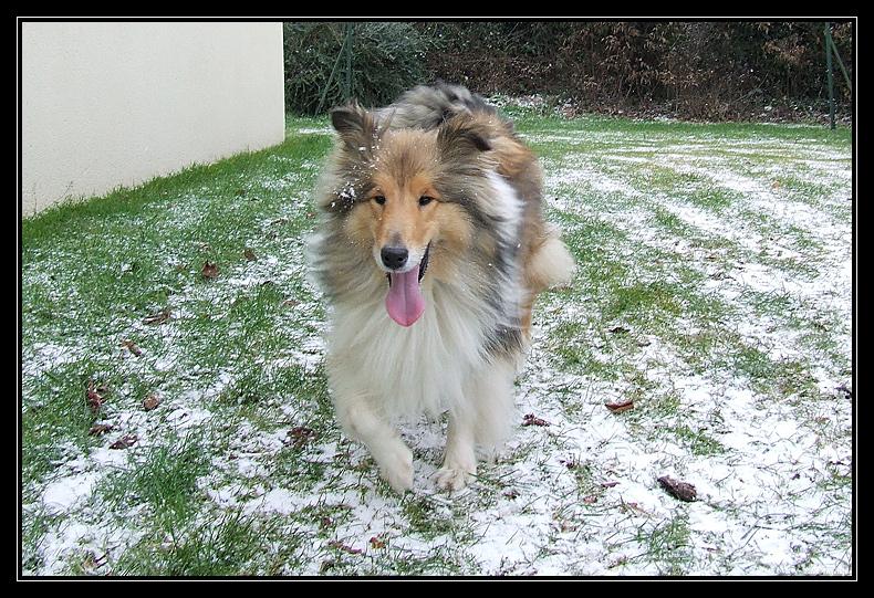 la première neige de Chyara LapremiereneigedeChyara3.2.2009.10.49.34